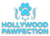hollywoodpawfection.com